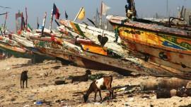 The Beach in Senegal