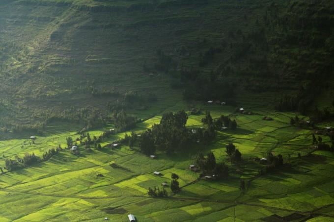 Ethiopian Farmland