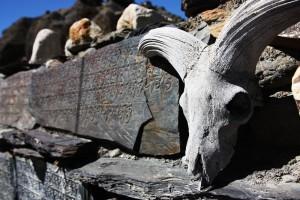 Tibetan Scrolls
