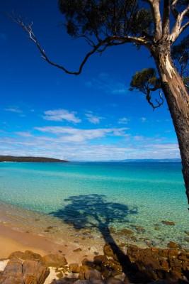 Bluestone Bay, Freycinet, Tasmania