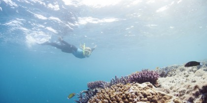 Great Barrier Reef, Queensland 131053 cTourism Australia