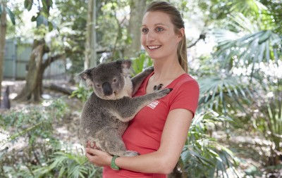 Koala Sanctuary, Brisbane