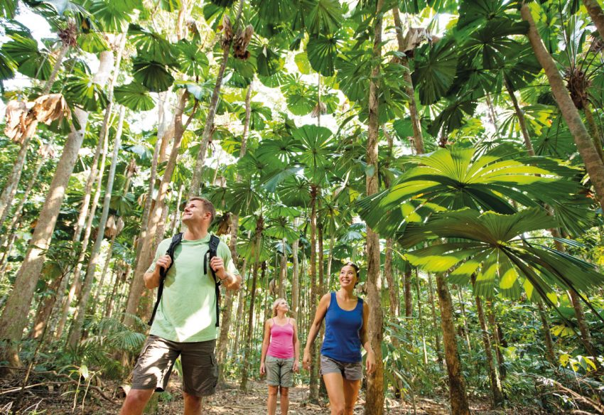 107495 634 Top 10 Things To Do In Cairns