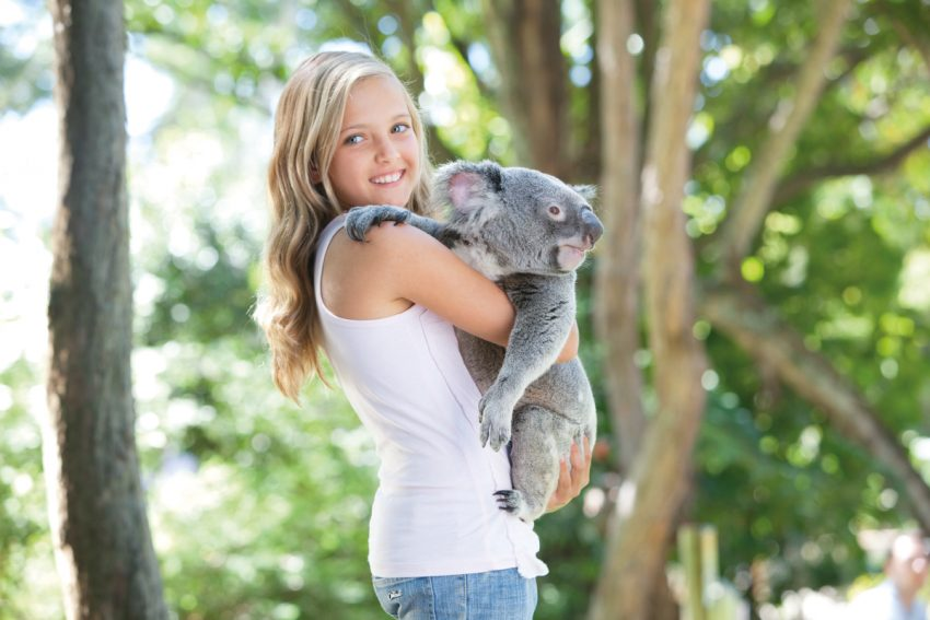 Palm 106316 Top 10 Things To Do In Cairns