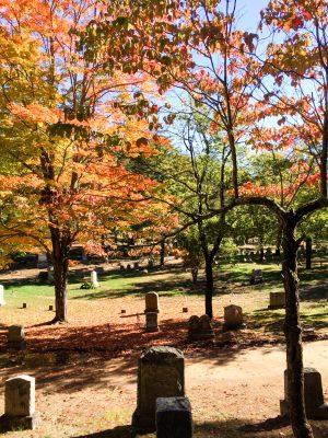 Concord Sleepy Hollow Cemetery Festive Fall Days: A Tour of Festivities, History, and Seasonal Fun in Massachusetts