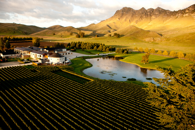 craggy range winery hawkes bay nz medium A Road Trip on the North Island of New Zealand