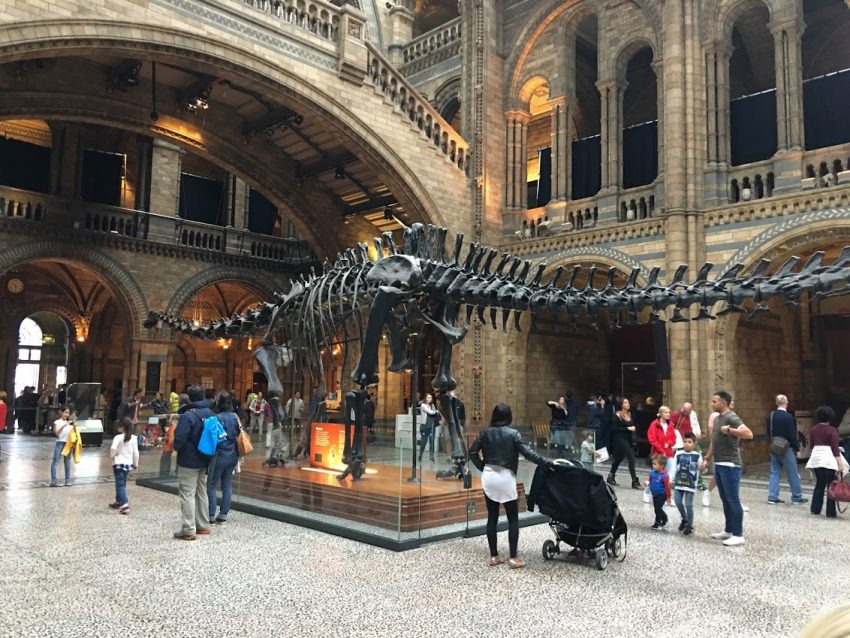 British Natural History Museum Tickets