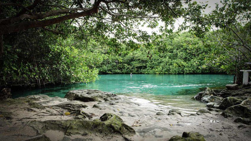 casa cenote 1 Cenotes - Mexico's Hidden Wonders