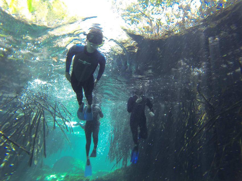 casa cenote snorkeling 1 Cenotes - Mexico's Hidden Wonders