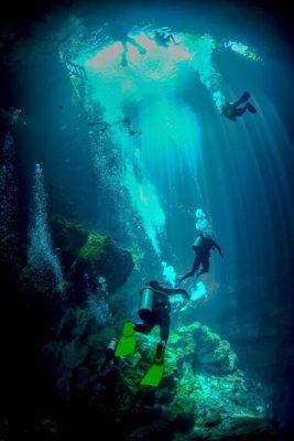 the pit divers 1 Cenotes - Mexico's Hidden Wonders