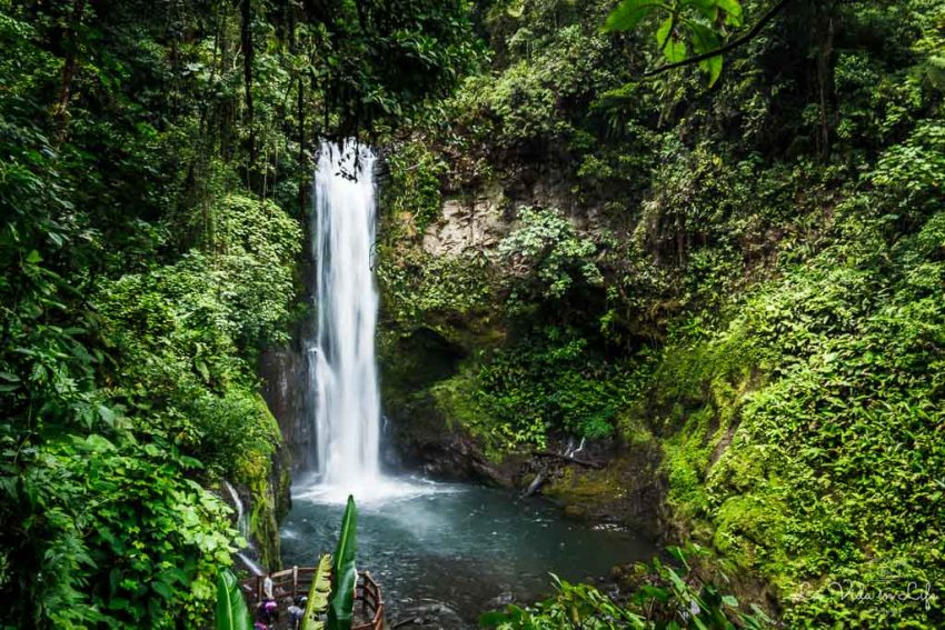 La Paz Waterfall Gardens 0064 Stunning Costa Rica Waterfalls and Hikes