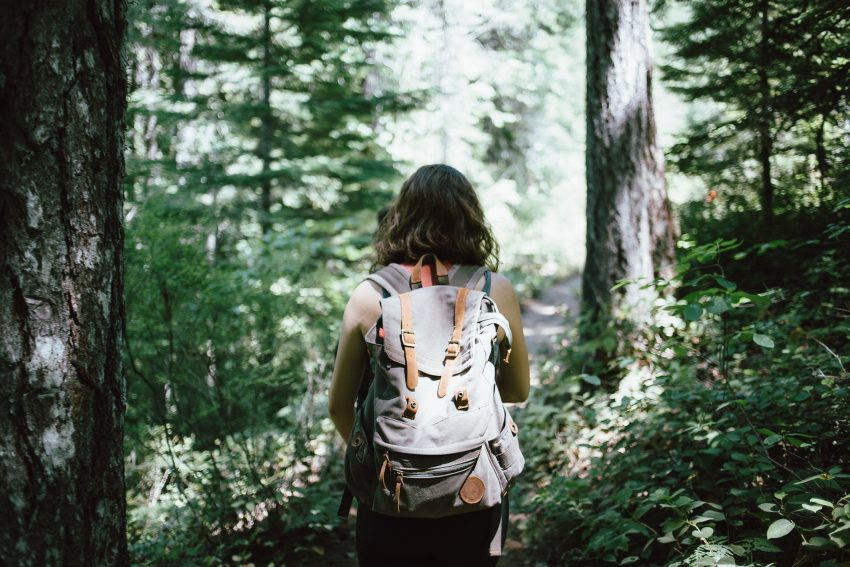 hiker 918704 1920 Top Tips for Going on a Hiking Trip