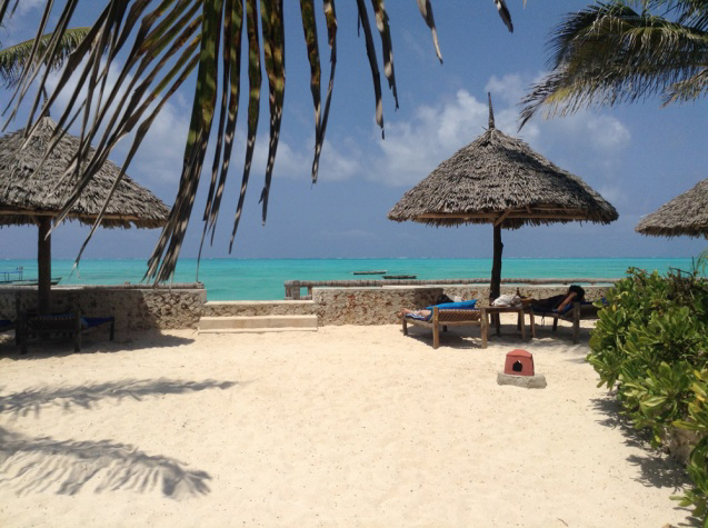 East Africa Zanzibar Top Safari Tips for your Travels in Africa