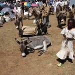 Axum Market