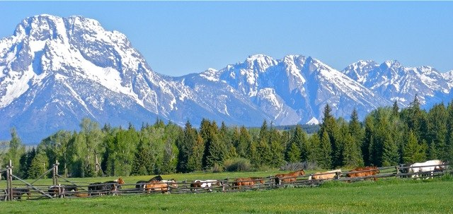 Moose Head Ranch, Grand Teton National Park