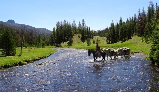 Find Your Frontier at a Dude Ranch