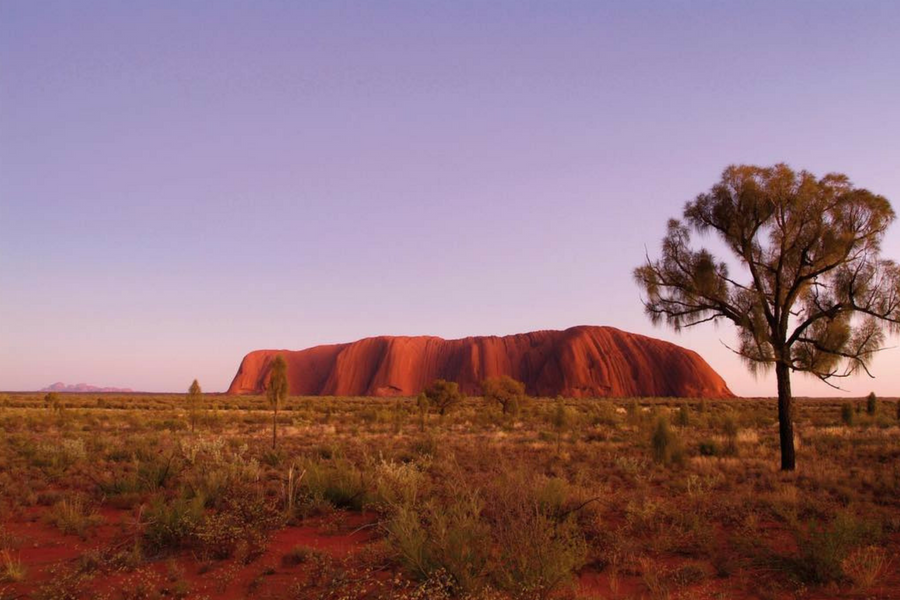 Planning an Adventure Tour to Uluru