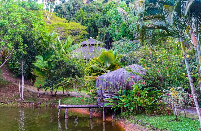 10.18.15 retreat 8 pond The Best Activities and Places to Visit on Your Vacation in Itacaré, Brazil