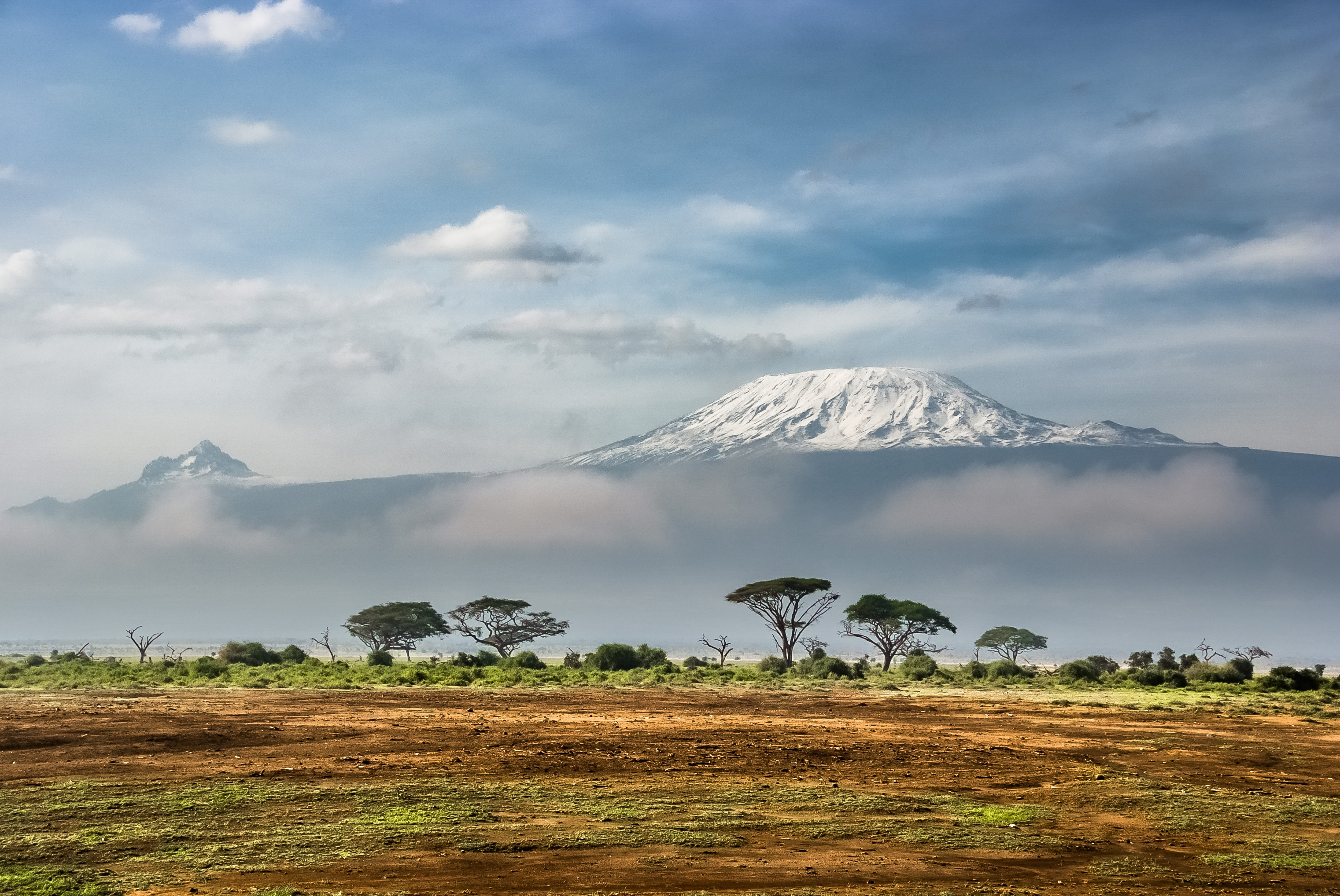 The Top 5 Countries for Safaris in Africa