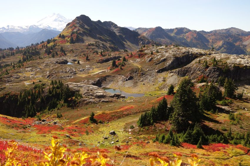 fall colors 4161435 1920 pixabay free stock An Unbelievable North Cascades National Park Experience