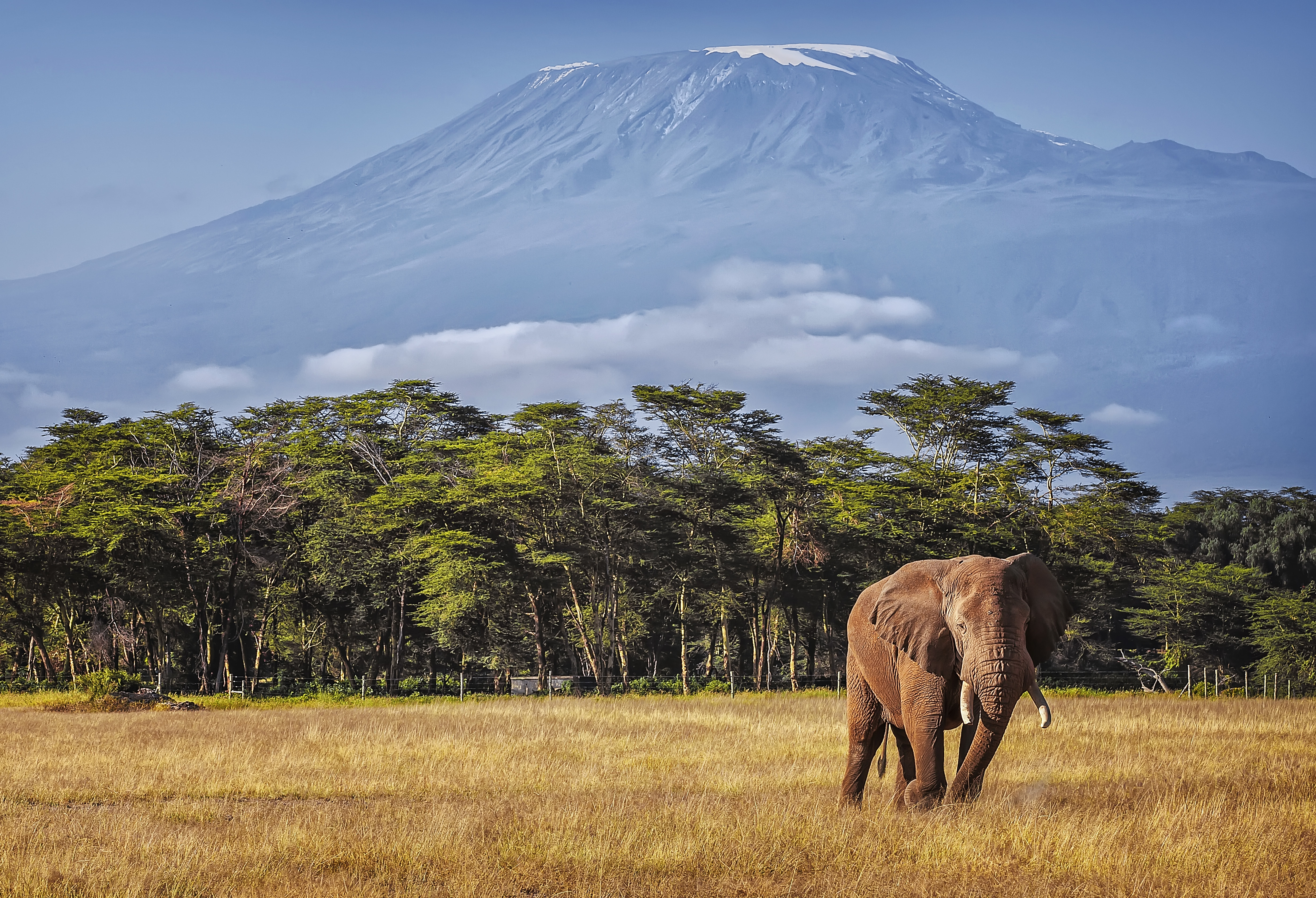 Kilimanjaro Preparation Guide: 10 Must-Haves for a Comfortable Hiking Trip