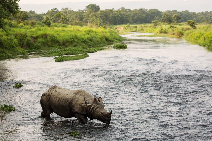 AdobeStock 157821498 Adventure activities you can do in Nepal