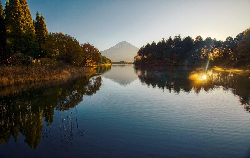 Lake Tanuki from Hotel