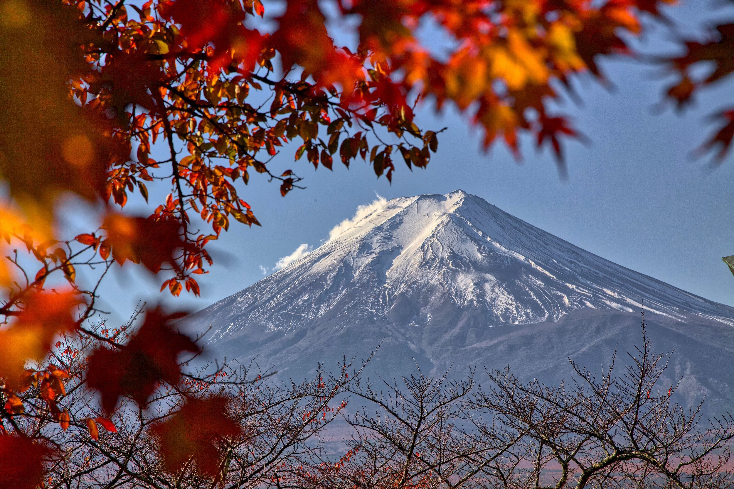 Mt. Fuji Road Trip Guide