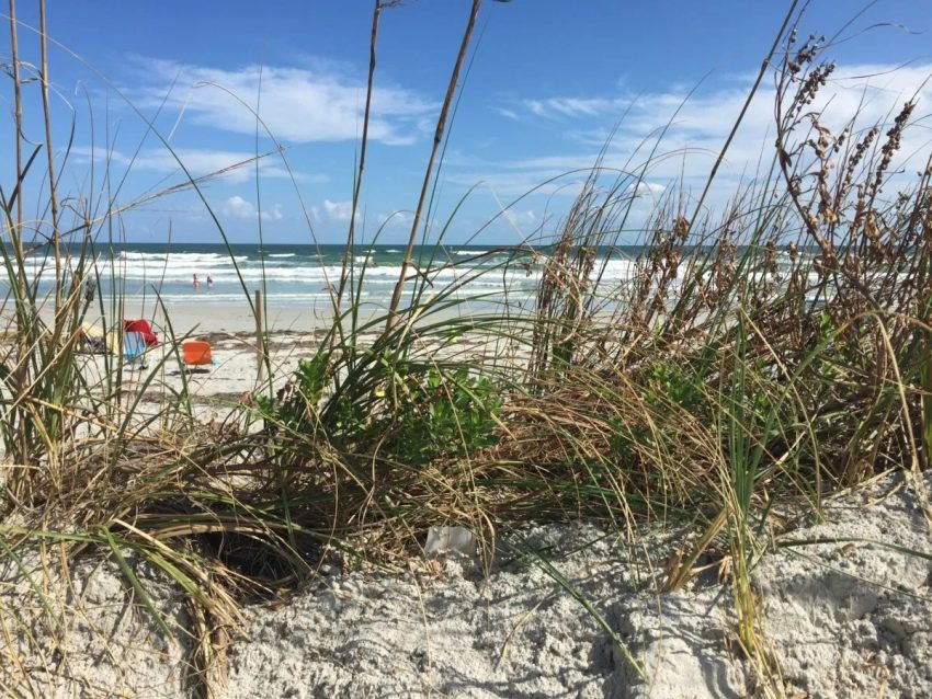 NewSmyrnaBeach Affordable Weekend Trips in the Southeastern U.S.