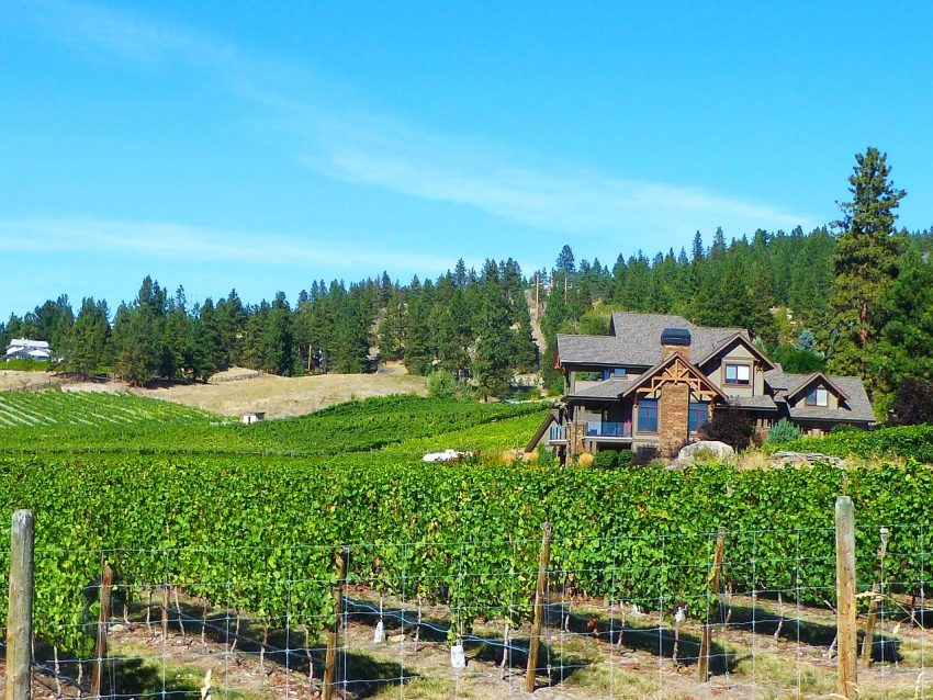 wine country 1601851 1280 Affordable Weekend Trips in the Pacific Northwest