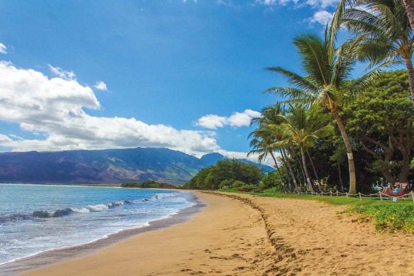 beach 1630540 1280 Saving Money on your Family Trip to Hawaii