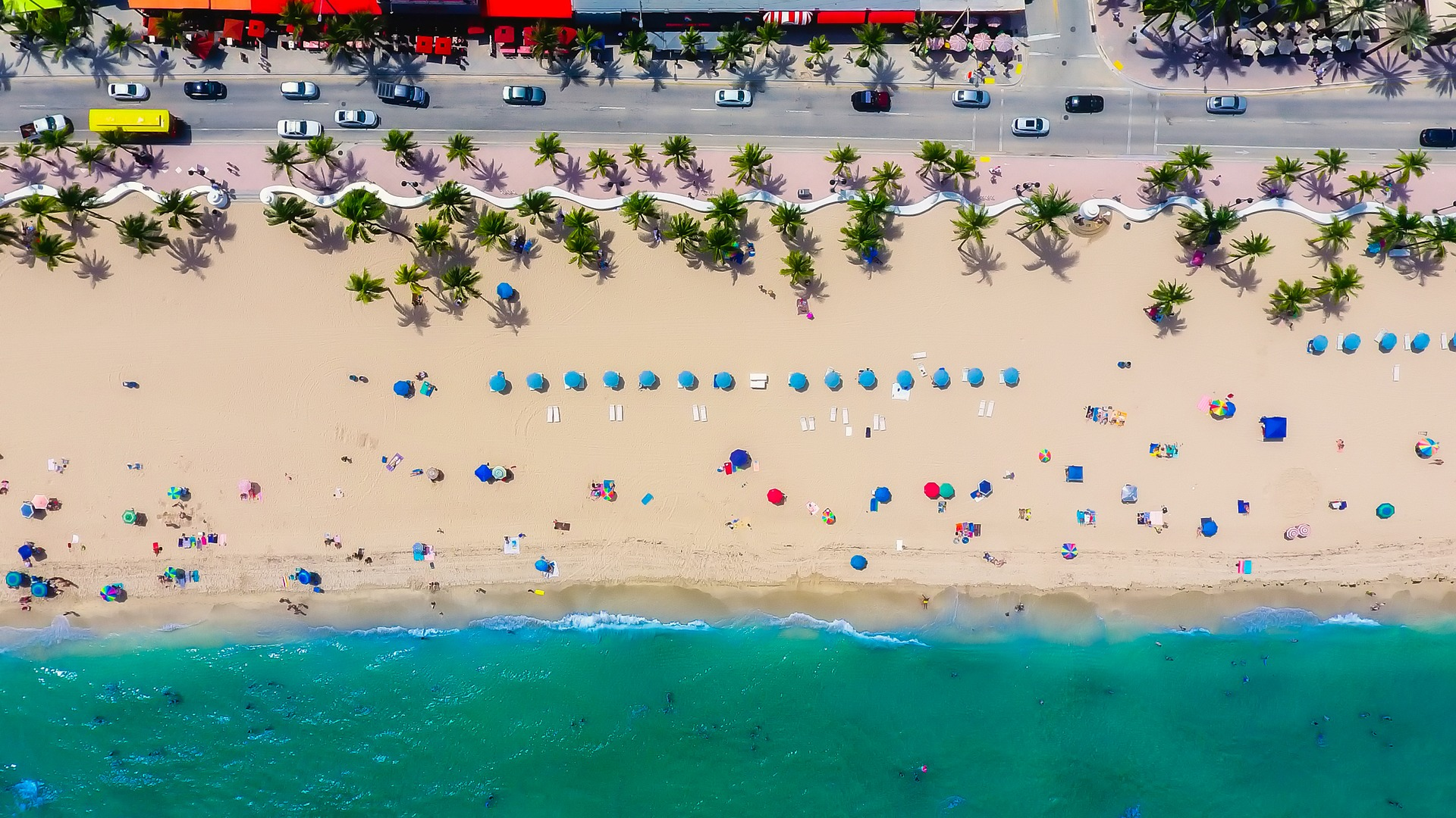 The Best Airbnb Vacation Rentals on the Beach in Fort Lauderdale