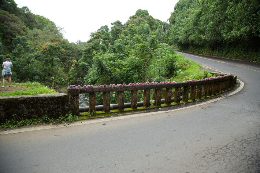Road to Hana 2 8 Adventurous Things to Do in Maui