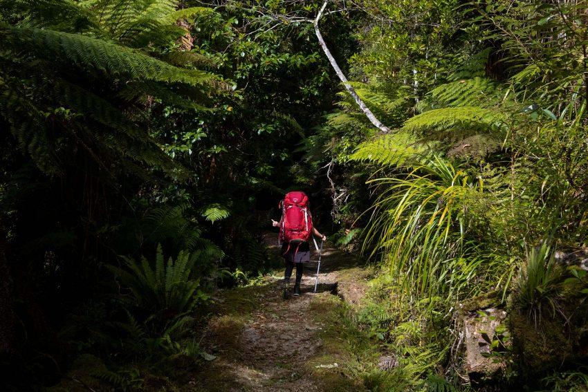 002 Jonny Baker NZ Great Walk A Complete Guide to New Zealand's Great Walks