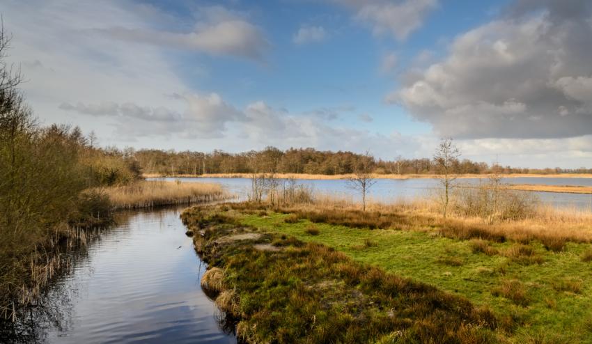 De Weerribben Wieden National Park Exploring the Dutch Village of Giethoorn