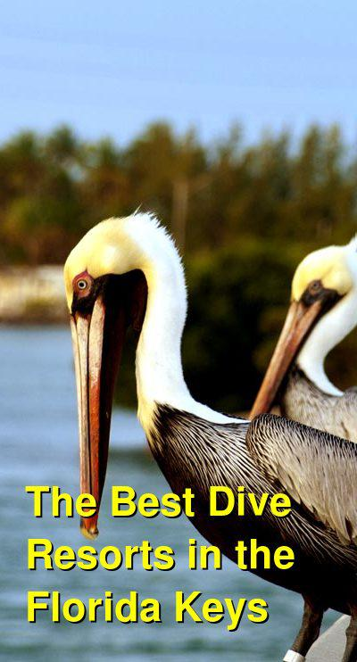 The Best Dive Resorts in the Florida Keys | Budget Your Trip