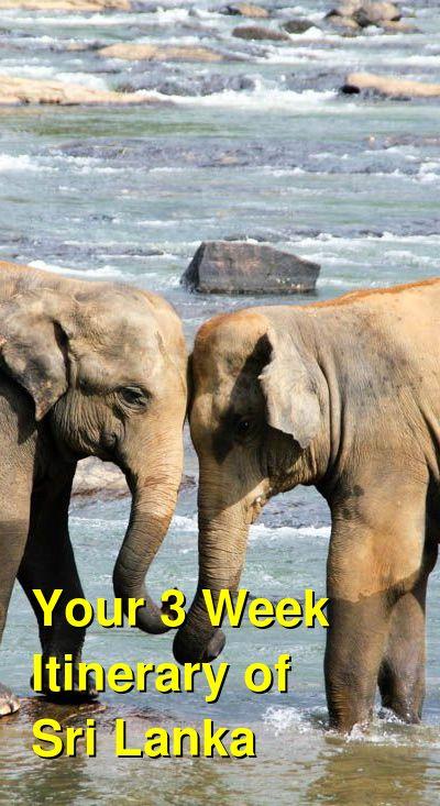A 3 Week Itinerary of Sri Lanka   Budget Your Trip