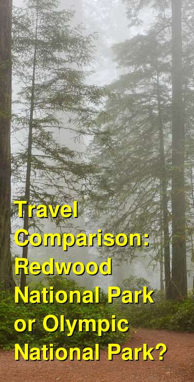 Redwood National Park vs. Olympic National Park Travel Comparison