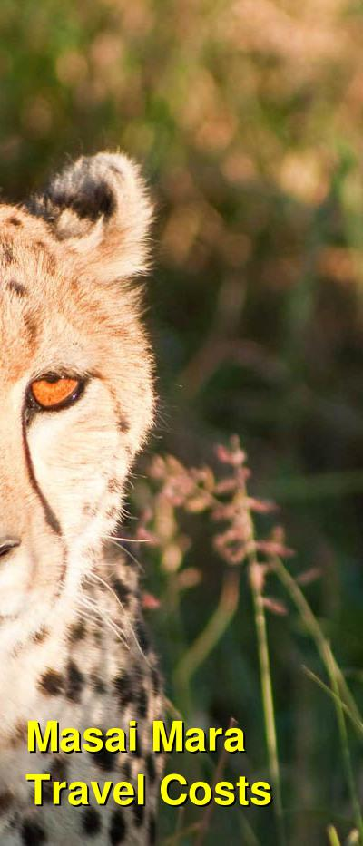 Masai Mara Travel Costs & Prices - safaris, Wildlife | BudgetYourTrip.com