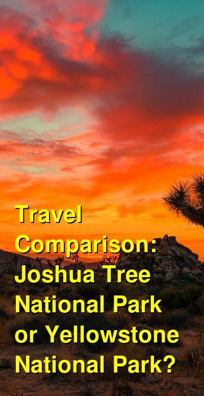 Joshua Tree National Park vs. Yellowstone National Park Travel Comparison