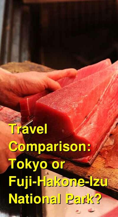Tokyo vs. Fuji-Hakone-Izu National Park Travel Comparison