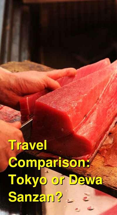 Tokyo vs. Dewa Sanzan Travel Comparison