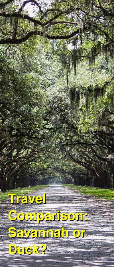Savannah vs. Duck Travel Comparison