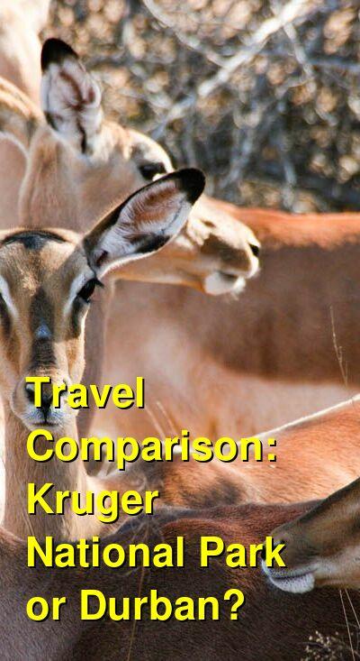 Kruger National Park vs. Durban Travel Comparison