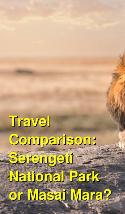 Serengeti National Park vs. Masai Mara Travel Comparison