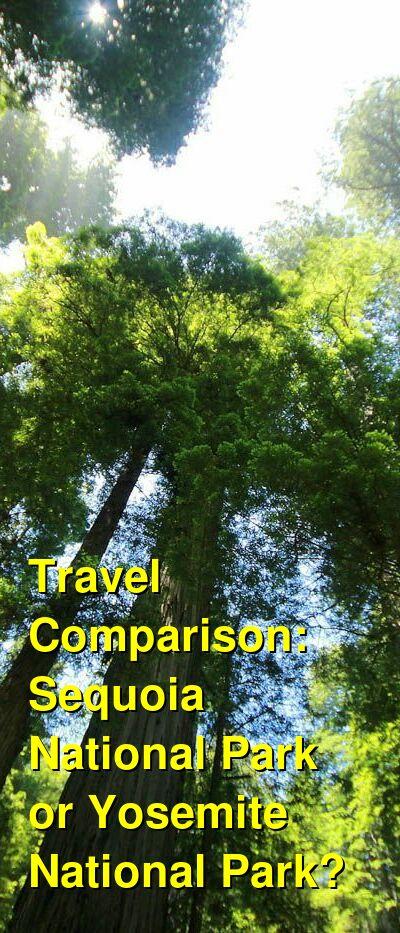 Sequoia National Park vs. Yosemite National Park Travel Comparison