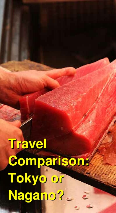 Tokyo vs. Nagano Travel Comparison