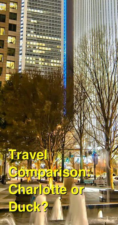 Charlotte vs. Duck Travel Comparison