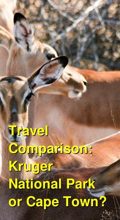 Kruger National Park vs. Cape Town Travel Comparison