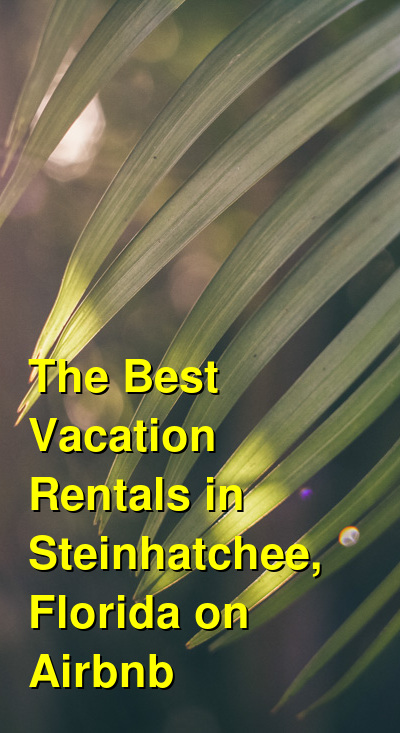 The Best Vacation Rentals in Steinhatchee, Florida on Airbnb & VRBO | Budget Your Trip